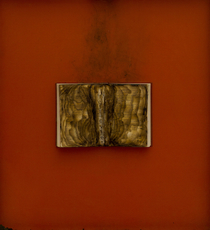 Bernard AUBERTIN - Pintura - Livre brulé