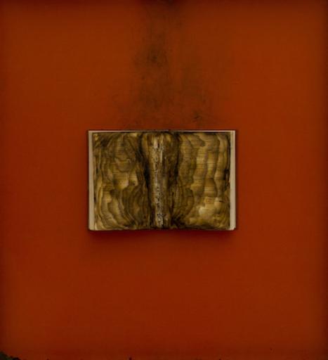 Bernard AUBERTIN - Pittura - Livre brulé