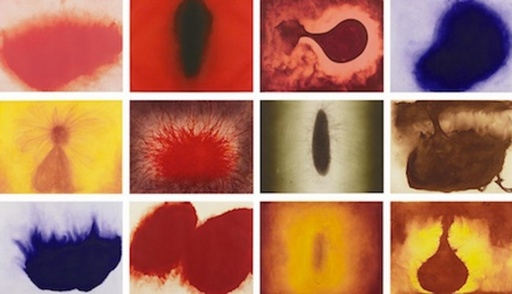 Anish KAPOOR - Print-Multiple - Twelve Etchings