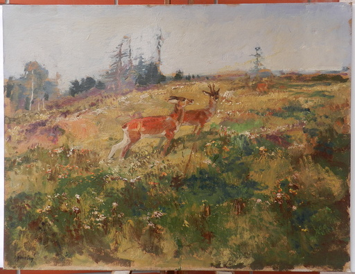 Josef KONECNY - Painting - Deer in the woods