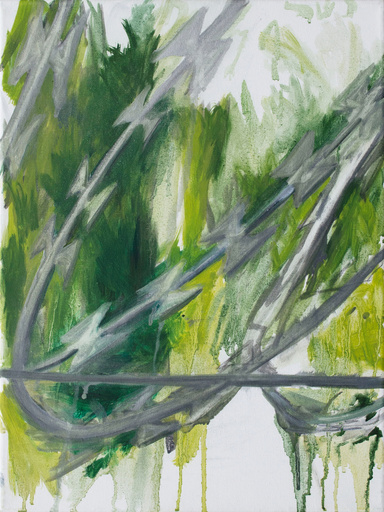 Tim TRANTENROTH - Peinture - Zaun