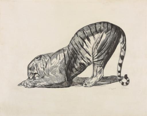Paul JOUVE - Grabado - Tigre sur sa proie
