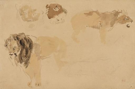 Eugène DELACROIX - Zeichnung Aquarell - Etude de Lions