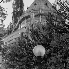 Clara CÉNA - Fotografia - Notre Dame de Paris