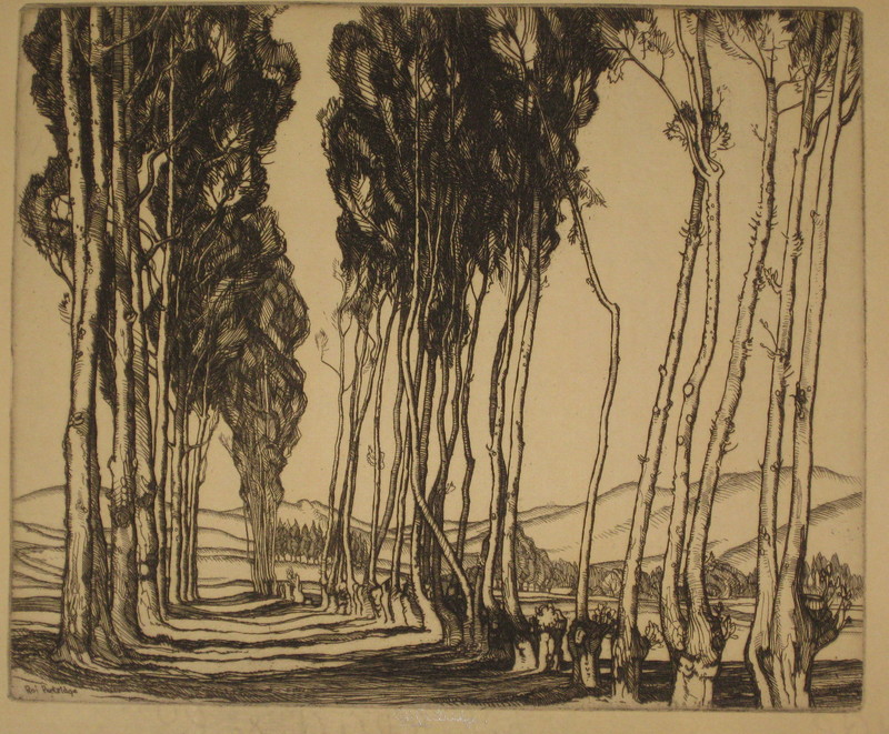 ROI PARTRIDGE - Grabado - Landscape with trees