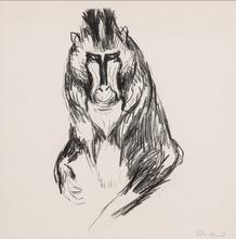 Edvard MUNCH - Grabado - Gorilla