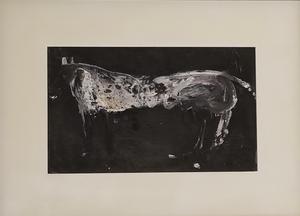 James HAVARD - Pintura - White Horse (painting)