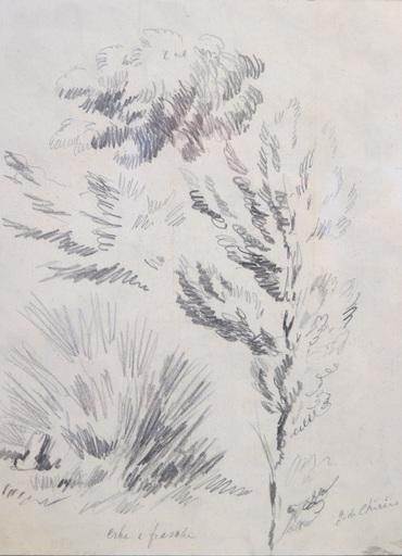 Giorgio DE CHIRICO - Dibujo Acuarela - ERBE E FRASCHE