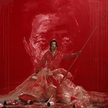 Gérard RANCINAN - Fotografia - Ming in Red Variante I