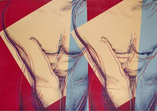 Andy WARHOL - Print-Multiple - Torso (DOUBLE)