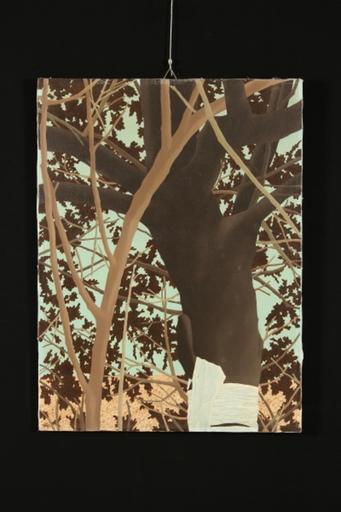 Giorgio MOISO - Painting - Fasciare un albero