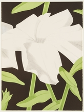 Alex KATZ - Estampe-Multiple - White Petunia