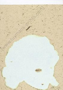 吕克•图伊曼斯 - 版画 - Untitled (Trouble spot.painting)