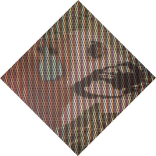 Cristiano PINTALDI - Peinture - Cow