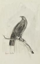 弗朗西斯·毕卡比亚 - 水彩作品 - L'aigle