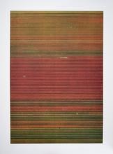 Andreas GURSKY - Estampe-Multiple - Ohne Titel XVIII (Tulpenfelder)