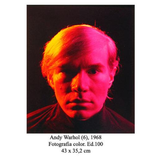 Philippe HALSMAN - Fotografia - Andy Warhol (6)
