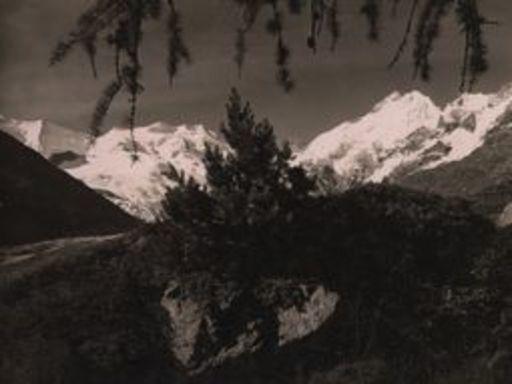 Albert STEINER - Fotografie - Bellavista und Piz Bernina