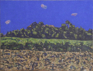 Vincent BIOULES, Maguelone