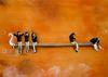 Hema UPADHYAY - Painting - untitled