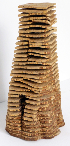 David NASH - Sculpture-Volume - Birch Crack and Warp Column