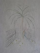 Salvador DALI - Grabado - GRAVURE 1975 GRAAL SIGNÉE AU CRAYON ML785 HANDSIGNED ETCHING