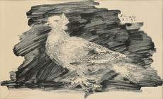巴勃罗•毕加索 - 版画 - Pigeon au fond gris