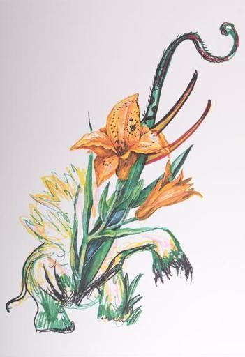 萨尔瓦多·达利 - 版画 - Hemerocallis Thumbergii Elephanter Furiosa (Elephant Lily)