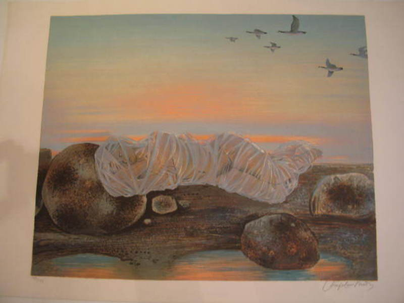 Roger CHAPELAIN-MIDY - Grabado - La Chrysalide,1978.