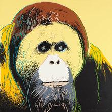 安迪·沃霍尔 - 版画 - Orangutan (FS II.299)