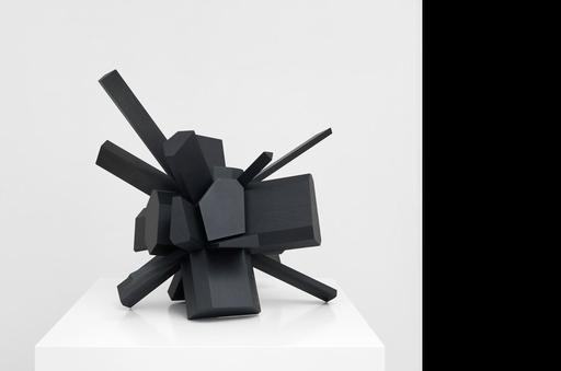 Arik LEVY - Escultura - Rock Growth 91 Wood