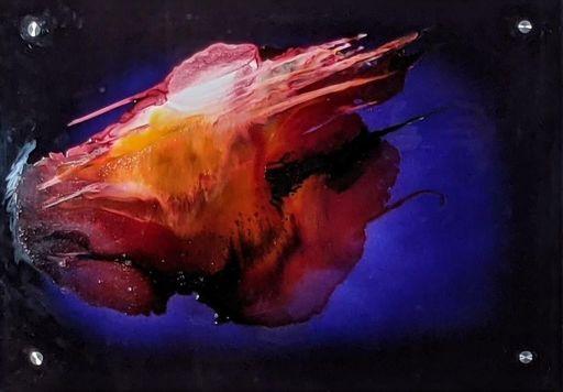 Dann AUBERT - Peinture - Plexi'Dann 2021. 04. 19