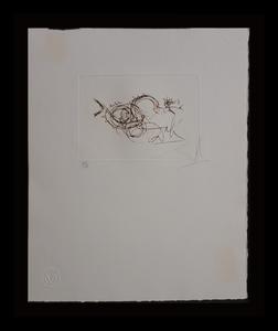 Salvador DALI - Grabado - Symbols Working