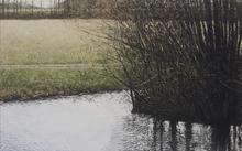 Benoît TRIMBORN - Pintura - Le ruisseau