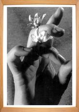 Eva LOOTZ - Fotografia - Symbolón decía, F.C.