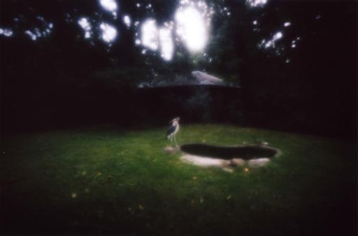 Rika NOGUCHI - Print-Multiple - Marabu #8