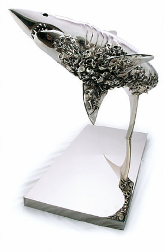 Thierry BENENATI - Sculpture-Volume - Requin cimetière