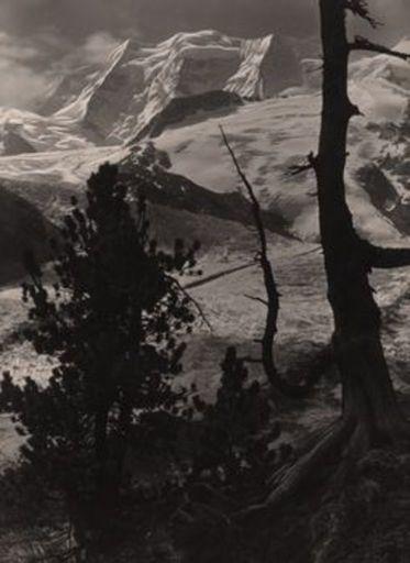 Albert STEINER - Fotografie - Der Piz Palü (Berninagruppe)