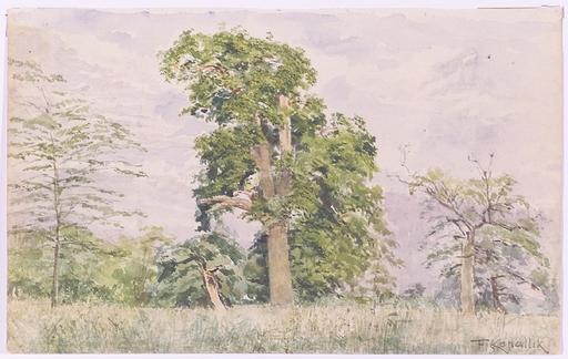 """Franz KOPALLIK - Dessin-Aquarelle - """"Vienna Forest"""", 1900"""