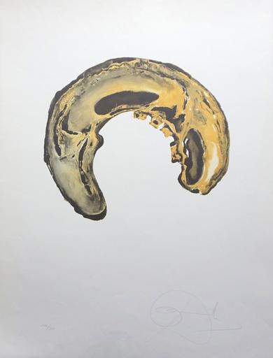 Salvador DALI - Druckgrafik-Multiple - Anamorphoses Skull