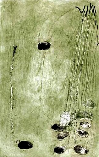 Miquel BARCELO - Estampe-Multiple - Les Germes