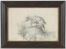 """Giuseppe CARELLI - Dibujo Acuarela - """"Goat"""", drawing, ca. 1880"""