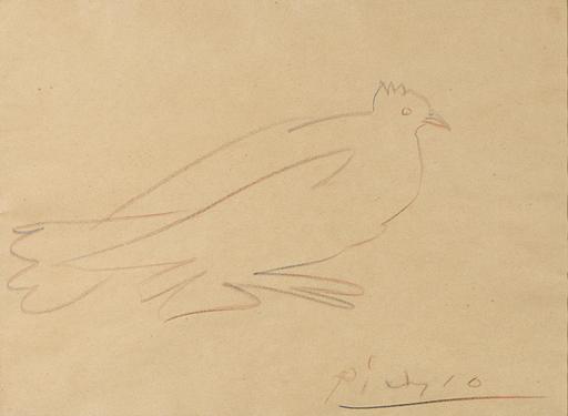 Pablo PICASSO - Disegno Acquarello - Pigeon