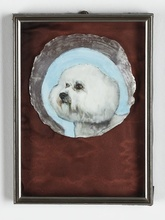 Leopold RABUS - Painting - Sans Titre (caniche sur coquillage)