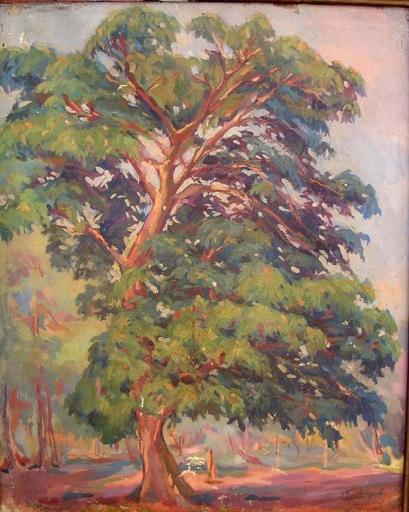 Mariano MIGUEL - Painting - Ceiba de Trinidad