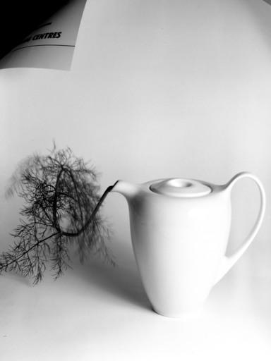 Giuseppe PERSIA - Photography - BROCCA BIANCA