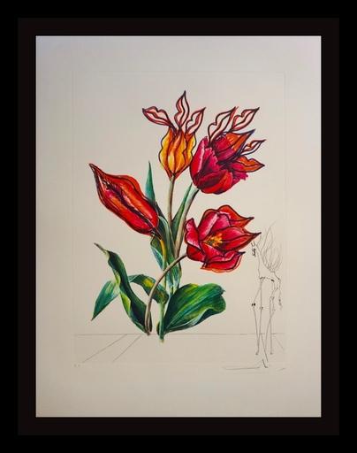 Salvador DALI - Grabado - Florals Tulips Girafe en Feu