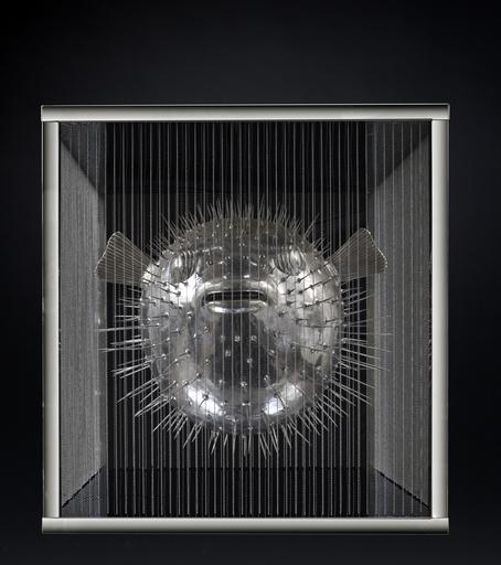 Mauro CORDA - Sculpture-Volume - Porc épic