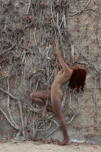 Michael K. YAMAOKA - Photography - Hope/Survival