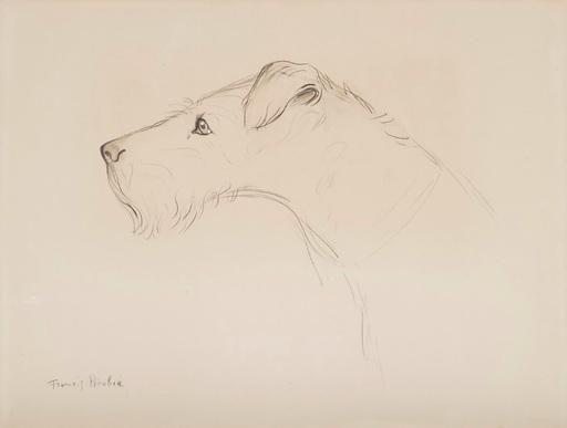 Francis PICABIA - Dibujo Acuarela - Chien de profil